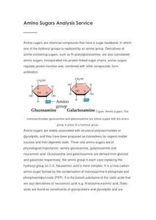 Choline and Choline Metabolites Analysis Service
