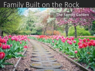 Family Built on the Rock