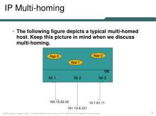 IP Multi-homing