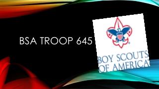 bsa  Troop 645