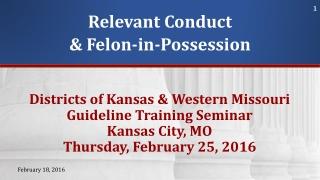 Relevant Conduct & Felon-in-Possession