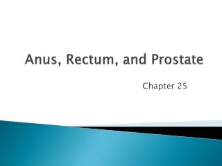 Anus, Rectum, and Prostate