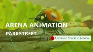 Animation Course in Kolkata - Arena Animation Parkstreet