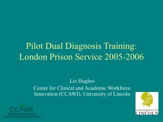 Pilot Dual Diagnosis Training: London Prison Service 2005-2006
