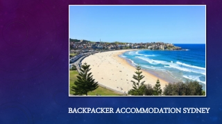 Enjoy Your Stay At Backpacker Accommodation Sydney