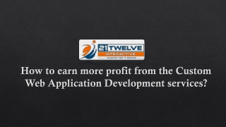 How to earn more profit from the Custom Web Application Development services