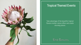 Create Lovely Arrangements with Protea Flower
