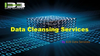 Data Cleansing Services   Data Cleansing   Data Cleansing Techniques
