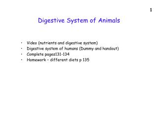 Digestive System of Animals