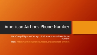 Get Cheap Flight to Chicago - Call American Airlines Phone Number