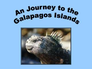 An Journey to the  Galapagos Islands