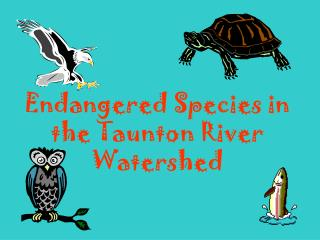 Endangered Species in the Taunton River Watershed