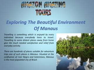 Exploring The Beautiful Environment Of Manaus
