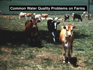 Common Water Quality Problems on Farms