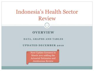 Indonesia's Health Sector Review