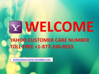 Email support phone number USA 1-877-336-9533
