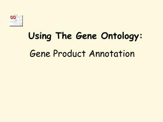 Using The Gene Ontology: