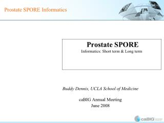 Prostate SPORE Informatics: Short term & Long term