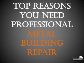 Top Reasons You Need Professional Metal Building Repair