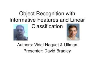 Object Recognition with Informative Features and Linear Classification