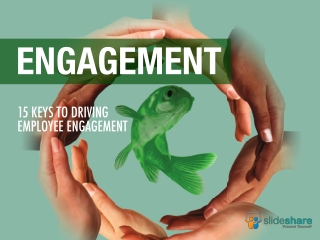 Green Goldfish Brochure
