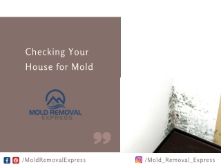 Checking Your House for Mold