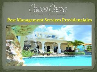Pest Management Services Providenciales