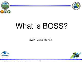What is BOSS?