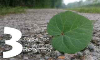 3 simple tips to improve your photography