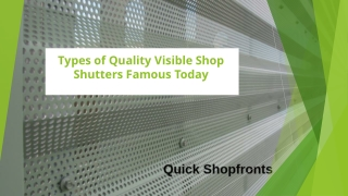 Types of Quality Visible Shop Shutters Famous Today