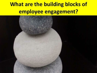 The Manager's Pyramid of Employee Engagement