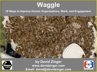 Waggle by David Zinger