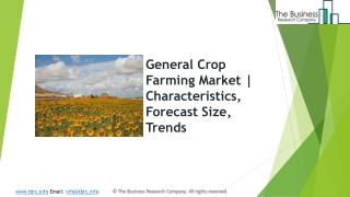 General Crop Farming Market   Characteristics, Forecast Size, Trends