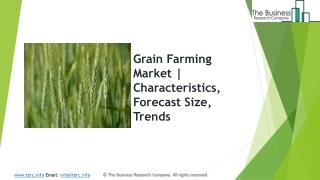 Grain Farming Market   Characteristics, Forecast Size, Trends