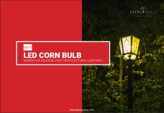 Why LED Corn Bulb Makes For An Excellent Horticultural Lighting.