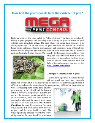 How best the professionals treat the existence of pest