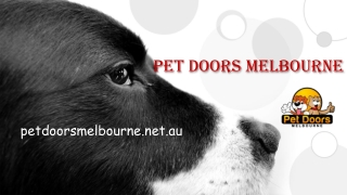 Keep Pets Safer and Happier in their Home