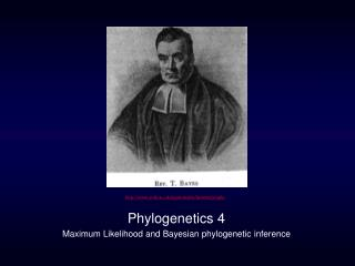 Phylogenetics 4 Maximum Likelihood and Bayesian phylogenetic inference