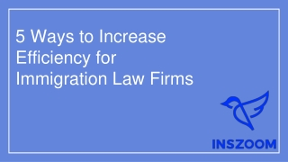 5 Ways to Increase Efficiency for Immigration Law Firms | INSZoom