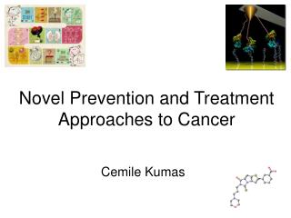 Novel Prevention and Treatment Approaches to Cancer