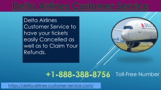 Get Delta Airlines Customers Services and Assistance