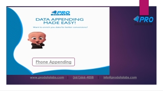 Phone Appending | Phone Appending Services | Phone Append