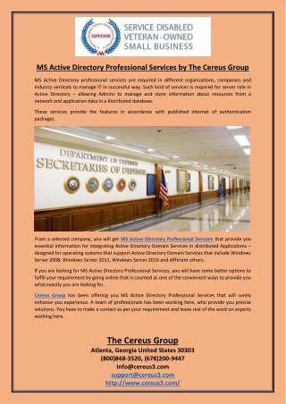 MS Active Directory Professional Services by The Cereus Group