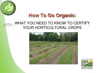 How To Go Organic: