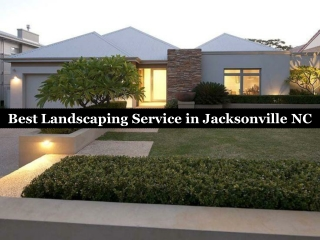 Best Landscaping Service in Jacksonville NC
