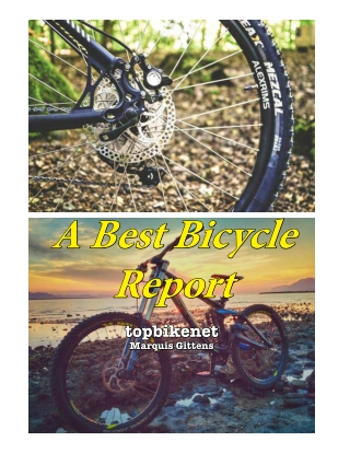 bike report 2019April