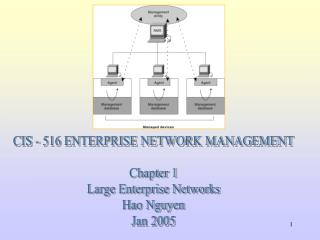 CIS - 516 ENTERPRISE NETWORK MANAGEMENT  Chapter 1 Large Enterprise Networks Hao Nguyen Jan 2005