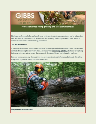 Professional tree stump grinding and tree stump removal