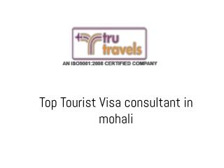 Top Tourist Visa consultant in Mohali