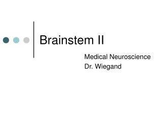 Brainstem II